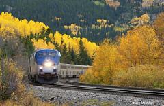 Zephyr in the Colors (joemcmillan118) Tags: colorado fallcolors amtrak unionpacific passengertrain tolland moffattunnelsubdivision