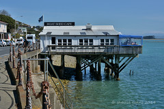 Nelson Waterfront (flyingkiwigirl) Tags: restaurant cafe waterfront nelson boatshed