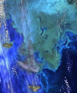 NASA Ocean Data Shows