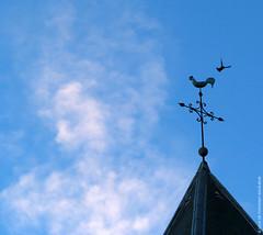 Girouette / Weather Vane (Fontenay-sous-Bois Officiel FRANCE) Tags: fontenay fontenaysousbois regionparisienne valdemarne iledefrance 94 94120 paris france clocher girouette pigeon fsb canon canong1x sky cloud nuage eglise church