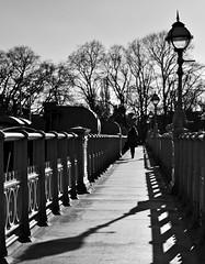 Walking Along the Bridge (shaunmck1) Tags: blackandwhite london pentax bridge trees urban shadows perspective patterns daytime