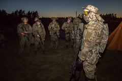IMG_8209 (Osiedlowychemik) Tags: asg ca15 combatalert2015 dariawróbel