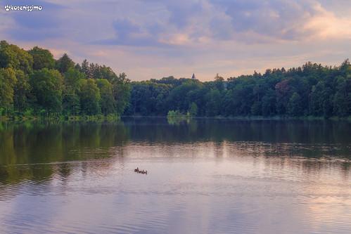 Countryside, Czech Republic. Загородный пейзаж, Чехия.