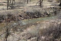 IMG_0894 (em.lincoln7) Tags: nature sarah mom spring getaway zion sue em stgeorge gmc 2014 gpc