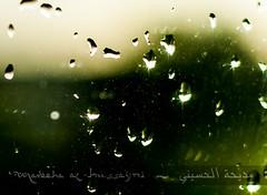 Rain? (Madeeha Al-Hussayni) Tags: green love window rain poetry tears emotion poetic angels feeling spirituality sufi sufism rumi