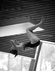 AMDC 2014, Amsterdam, Netherlands (monsieur I) Tags: amsterdam sport europa europe thenetherlands eu diving intheair 2014 acrobaticdiving amdc2014 amsterdammastersdivingchampionships