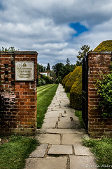 Tylney Hall-65 (derena_d) Tags: trees beautiful hotel hall vanishingpoint pavement path infinity hampshire beyond cobbles footpath pathway uneve