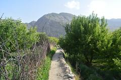 Path![Explore]