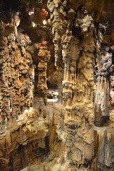 24 (jen_orator) Tags: france explore chamber grotto cave languedoc stalactites stalagmites grotte demoiselles