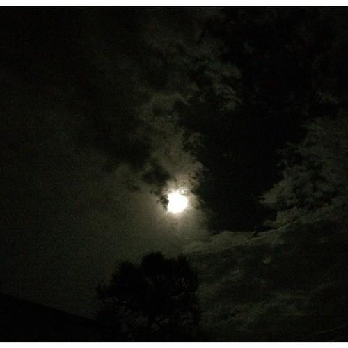今空〜  雲の合間にお月様は見えてるけど、生暖かい強い風が吹いてて、台風の影響が出始めてる事を感じる長崎・大村、金曜日の夜です!  今週のシフトが終わり、明日・明後日と休みですが、台風の進路に左右される二日間になりそうです  これから台風の進路にあたる方面の皆さま、十分お気をつけてお過ごしくださいネ♪♪
