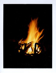 8 8 14 -finally got the campfire going with wet wood and very few pieces of paper available (EllenJo) Tags: camping summer arizona nature august nationalforest campfire campout campground mingus highaltitude themountain 2014 mingusmountain polaroidlandcamera instantfilm highelevation prescottnationalforest fujifp100c 7200feet yavapaicounty fujiinstantfilm ellenjo summerinarizona ellenjoroberts mingusmountainrecreationarea polaroidpathfinder rollfilmcameraconvertedtopackfilm convertedpathfinder august2014 potatopatchcamground