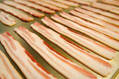 baconwood 2010