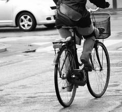 strip i københavn ladyboy i danmark