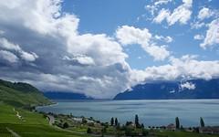 cloud patches (Riex) Tags: light summer lake water clouds zeiss landscape switzerland vineyard eau suisse sony lac lumiere carl nuages leman paysage vignoble vigne ete a100 amount vaud lavaux f3545 1680mm sal1680z minoltaamount variosonnartdt35451680