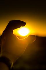 sun !!