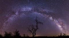 Milky Way panorama along Pine Valley Road atop Mount Laguna (slworking2) Tags: california way unitedstates milky milkyway mountlaguna vialactea
