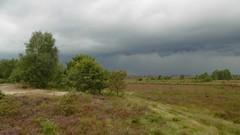 Stormy Rosendale (Nelis Zevensloot) Tags: nationalpark veluwezoom natuurmonumenten rosendael velp rozendaal rozendaalseveld nationaalparkdeveluwezoom
