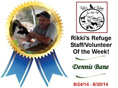 Rikki's Refuge Staff/Volunteer of the Week!