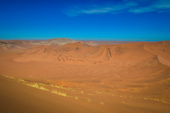 On the top of the highest sand dunes of the Namib desert, Namibia (jbdodane) Tags: africa bigdaddy day622 desert dunes namibnaukluft namibnaukluftpark namibia sand sanddunes sesriem sossusvlei freewheelycom jbcyclingafrica