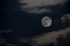 Super Luna 2014 (Jos M. Arboleda) Tags: moon eos colombia jose luna 5d canos arboleda markiii popayan ef85mmf18usm josmarboledac ef400mmf56lusm14x