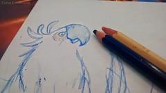 Dibujando para mi hija (KARLINHOS18) Tags: colors photography photo foto parrot colores motorola crayon cockatoo fotografia macaw dibujo scketch loro papagayo cacatua trazos guacamayo motorolaxt1032