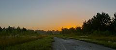 Cypress Creek Preserve - HDR (TJ Winston) Tags: florida pascocounty cypresscreekpreserve