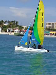 DSC00414 (eric15) Tags: beach race cat surf sailing wind offshore competition surfing racing aruba international catamaran sail windsurfing regatta optimist sunfish 2014