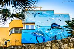 Casa del mar (cives-expat) Tags: sea españa house fish beach architecture arquitectura peces playa cádiz elpuertodesantamaría elancla