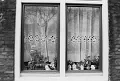 Schilderswijk 001 (Dutch Design Photography) Tags: street portrait people photography foto fotografie social denhaag housing 1995 portret thehague journalism reportage straat mensen journalistiek fotoreportage schilderswijk straatfotografie
