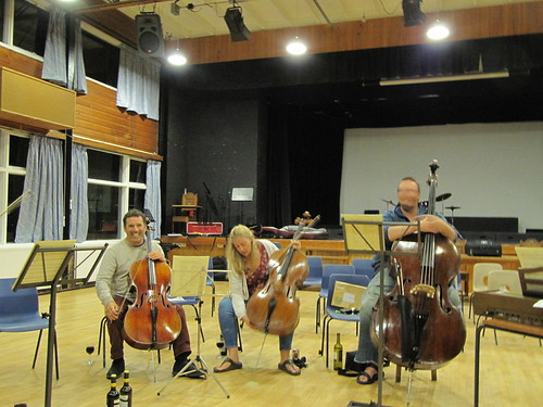 Brandenburg 1 viol da gamba and bass section