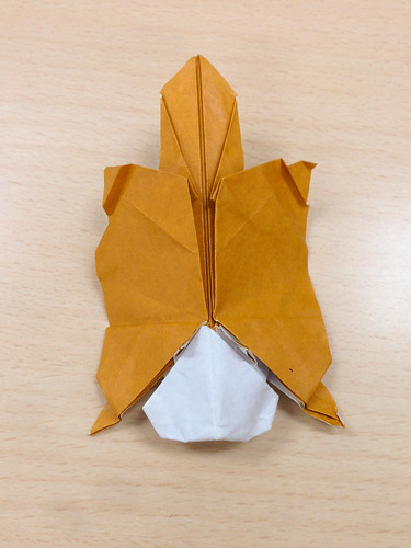 Origami Class Flying Squirrel