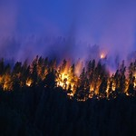 California's wildfires
