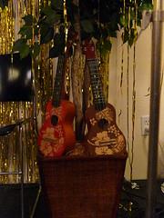 Frank's Ukulele Bash 2014 004 (wildukuleleman) Tags: franks ukulele bash 2014 provincetown massachusetts mary martin womr franksukulelebash2014 wildukuleleman