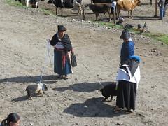Otavalo-13