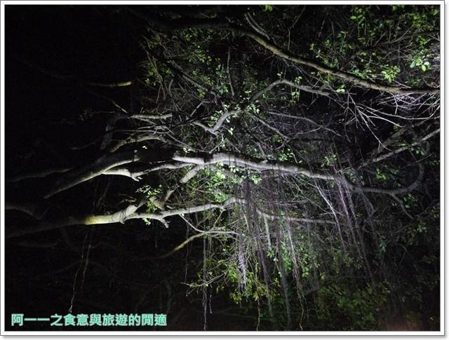 台東旅遊景點夜訪小野柳釋迦冰淇淋image013
