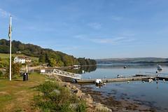15136318307 d585c23c72 m The Teifi Estuary Cardigan