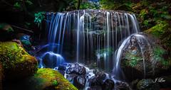 Weeping Rock waterfalls (**James Lee**) Tags: green nature landscape moss sydney australia bluemountains waterfalls cascades nsw katoomba leura bluemountain jameslee weepinrock