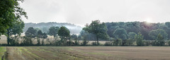 End Of Summer (Osgoldcross Photography) Tags: trees summer panorama mist nature field fog fauna landscape flora nikon poetry raw poem afternoon fields stitched nikond1700