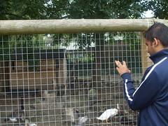 Trip to Mudchute Farm 2014