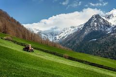 Farmers First Work (Bergfex_Tirol) Tags: tirol oesterreich alps alpen nordtirol bergfex österreich mountain northtyrol berg austria stjodok tyrol harrow schmirntal wiese tractor gras meadow frühling schmirn spring frühjahr