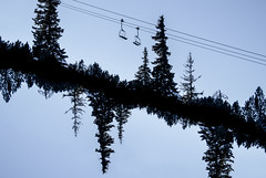 from a thread of sky (gavin.hoskins) Tags: nikon1 nikon borovets bulgaria skiing chairlift outside winter snow trees silhouette sky blue 2017 landscape doubleexposure double multipleexposure