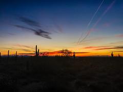 Beautiful sunrise in the Whitetanks. (Brian Just Got Back From...) Tags: whitetankmountains phoenix arizona sunrise cactus horizon