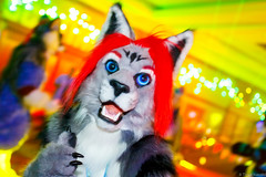 _MG_0713 (Tiger_Icecold) Tags: confuzzled cfz2016 cf2016 furcon furry convention fursuit birmingham party deaddog ddp deaddogparty
