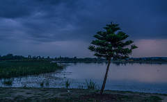 "Dawn at Lake Wendouree • <a style=""font-size:0.8em;"" href=""http://www.flickr.com/photos/7605906@N04/33503198286/"" target=""_blank"">View on Flickr</a>"
