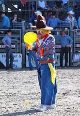 P3110115 (David W. Burrows) Tags: cowboys cowgirls horses cattle bullriding saddlebronc cowboy boots ranch florida ranching children girls boys hats clown bullfighters bullfighting