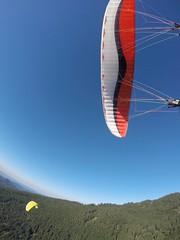 G0070719 (fiaskogaul) Tags: gleitschirmfliegen