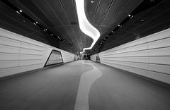 Wynyard walkway to Barangaroo (David Marriott - Sydney) Tags: sydney newsouthwales australia au barangaroo walkway wynyard bw 14mm samyang