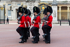 Halt Stomp (Mikepaws) Tags: park uk greatbritain england london westminster army unitedkingdom military capital ceremony royal parade celebration event soldiers historical annual procession bearskin 2014 queensguard ceremonial troopingthecolour unitedkingdomofgreatbritain householddivision
