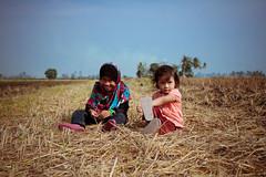 Harvested Paddy (sengkenitz) Tags: lilydamia abenoor sengkenitz daliahana irisdafina bibiiklima
