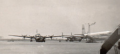 Propliners at Tokyo(?) airport, circa 1953 (Proplinerman) Tags: tokyo aircraft packet boeing douglas fairchild airliner 1953 c97 dc6 dc4 c54 propliner dc6b c118 c82a